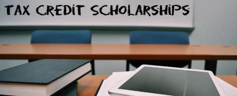 schools PAGE2-tax credit scholarships